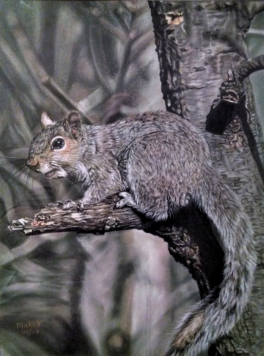 Pastel Squirrel by Micki Vroman
